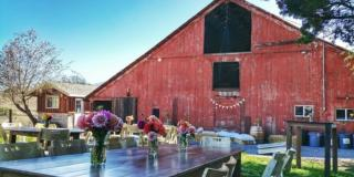 Host an Event at Stemple Creek Ranch