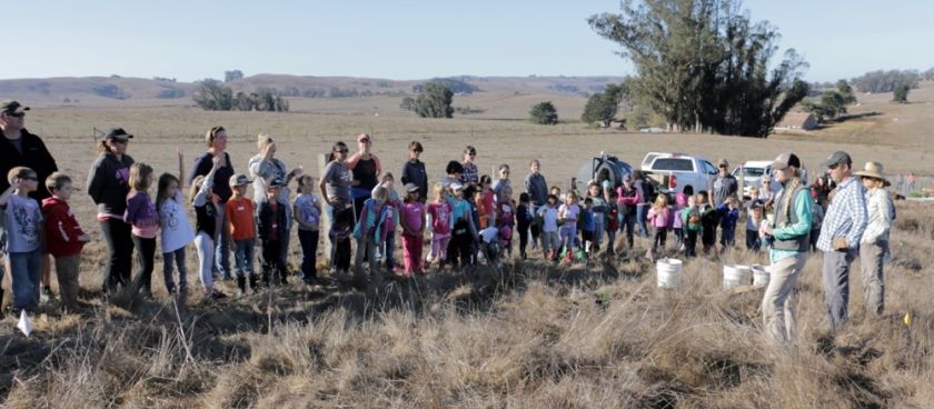 STRAW visits Stemple Creek