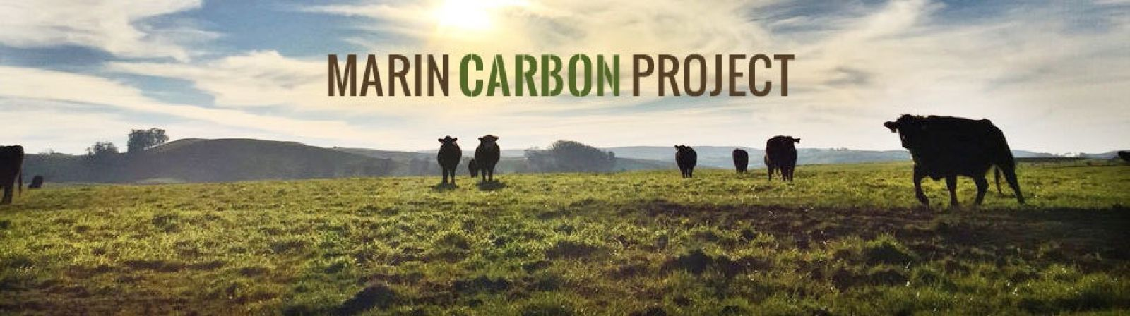 The Marin Carbon Project