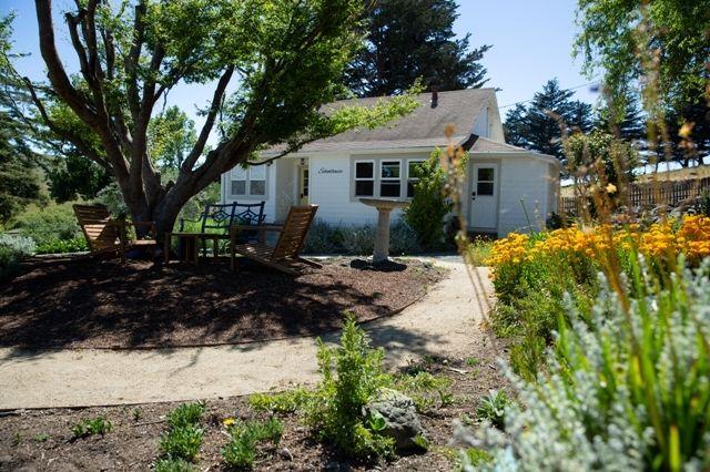 066 Stemple Creek Flowers 05282020 paigegreen