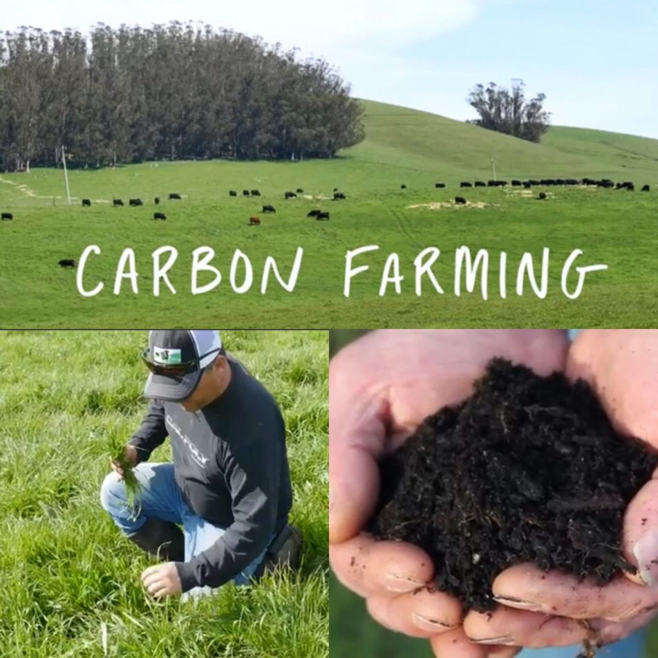 Scrcarbon Farming