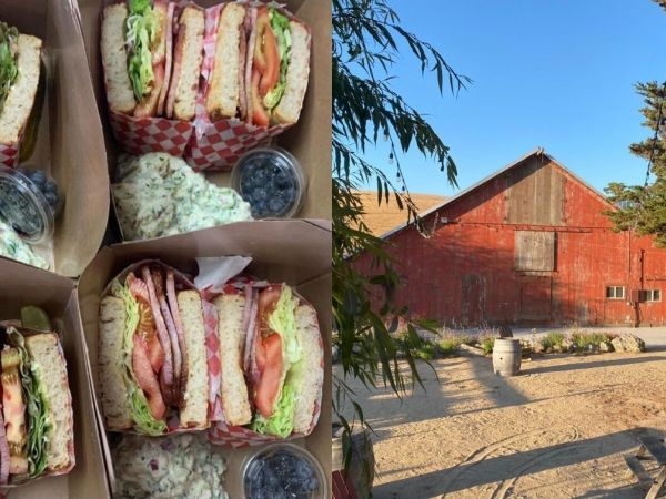 Take a Self-Guided Hike and Picnic at our Ranch!