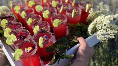 Fruit Shrub Making + Cocktail Class